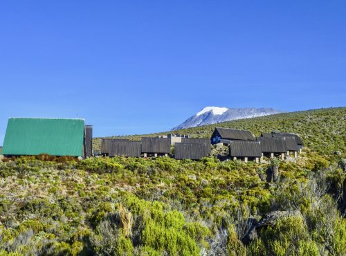 huts at Mount Kilimanjaro, the highest mountain in Africa (5892m), seen through the crops.